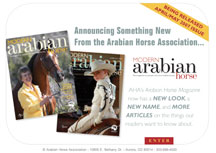 Modern Arabian Horse Magazine Self Promo Ads