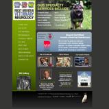 Rocky Mountain Veterinary Neurology Website Design