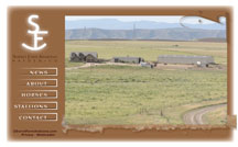 Sorrel Farm Arabians Website Redesign
