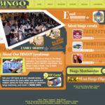 Bingo Colorado Website Design Services