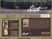 Website Design Day Spa
