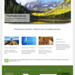 Parker Website Design Professional Medical Services
